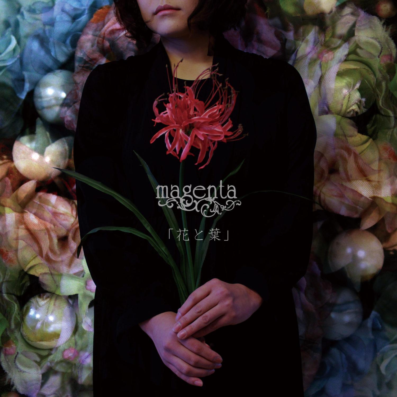 magenta_花と葉