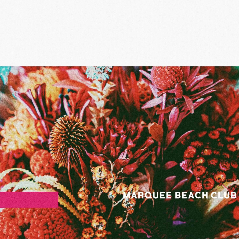 MARQUEE-BEACH-CLUB_follow