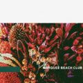 MARQUEE BEACH CLUB / journey / feel