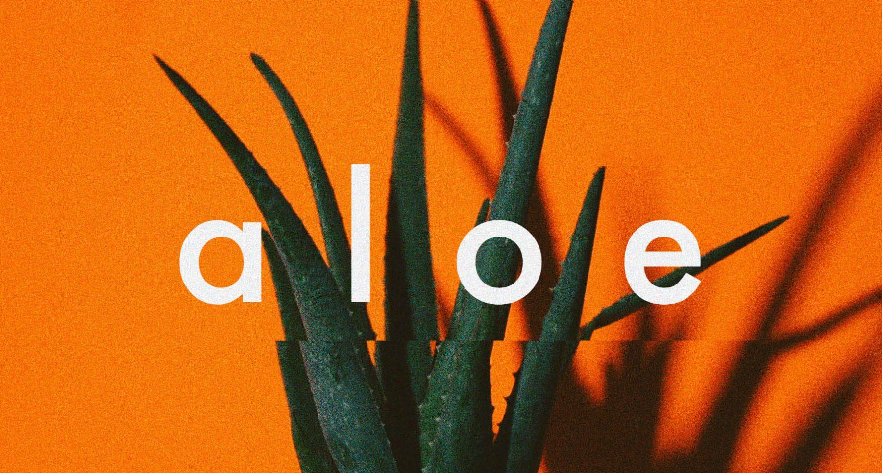 macico / aloe (Official Music Video)