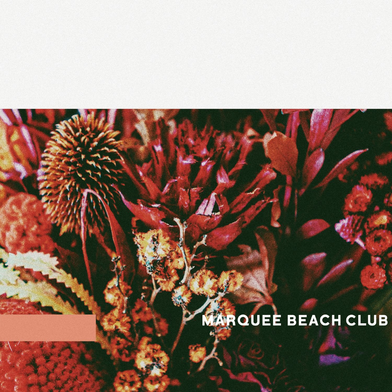 MARQUEE BEACH CLUB / E.P.「acoustic follow」